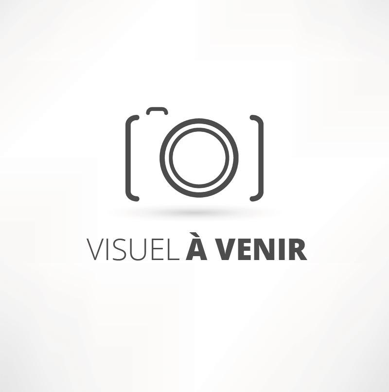 Corsac / Vincent